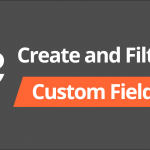 How to Create and Filter Custom Fields